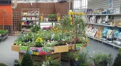 Northern Living - Seedlings - Garden Centre, Café, Farm Shop, Carlton, Goole, near Selby